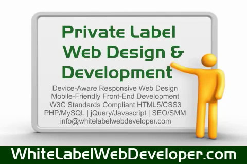 Play Private Label Web Development Video (.WMV)
