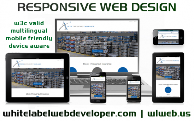 Web Designer Fort Davis Texas