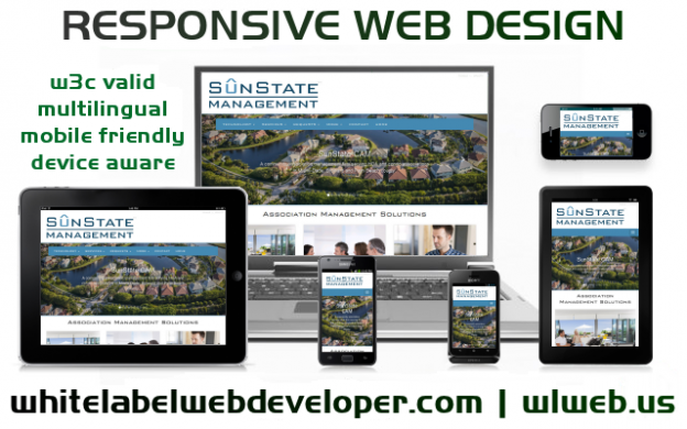 Web Designer Study Butte Texas