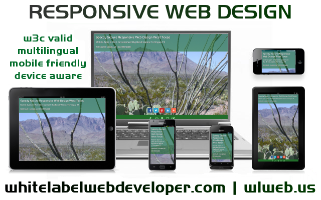 Responsive Web Developer