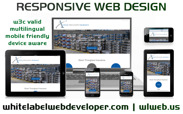 Responsive Web Developers
